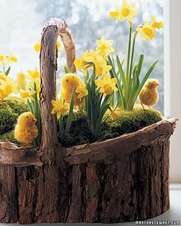 Flower basket with yellow chicks